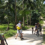 cyclegallery12.jpg