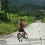 cyclegallery02.jpg
