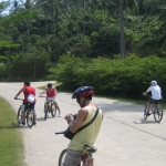 cyclegallery13.jpg